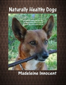 Naturally Healthy Dogs
