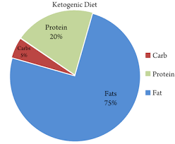 high fat low carb diet