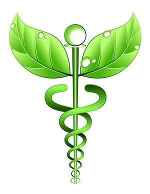 the holistic approach to health